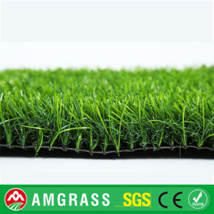 Artificial Turf and Synthetic Grass