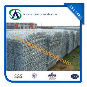 4.4mmx3.6mx2.2mx15X15cm Galvanized Welded Wire Mesh Panel pictures & photos