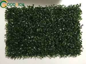 Artificial Grass for Many Kinds