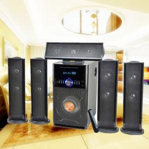 Hot Selling 5.1 Stereo Speaker (DM-6516)