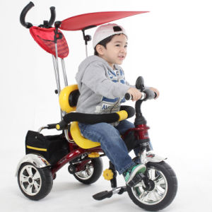 Kids Tricycle (KR01)