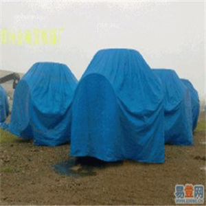 PE Tarpaulin, Tent Material Waterproof Outdoor Plastic Cover HDPE Fabric pictures & photos