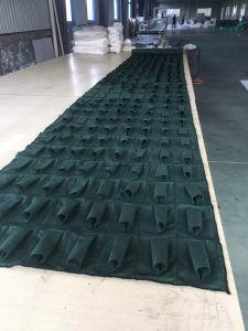 Green Hang Pocket Planter Bags for Vertical Garden pictures & photos