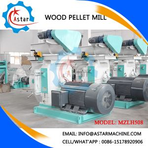 Cheap Wood Fuel Pellets for Sale (Machines) pictures & photos