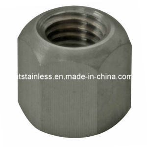 DIN6330 Ss316 Ti 1.4571 Hex Nut pictures & photos
