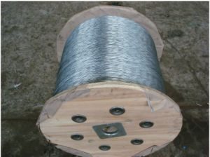 Tongguan Steel Wire Strand 1*61 etc pictures & photos