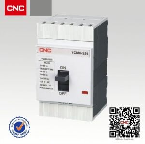 Ycm6 250 AMP MCCB pictures & photos