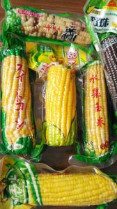 Manufacturers of Vacuum-Packing Bags of Maize