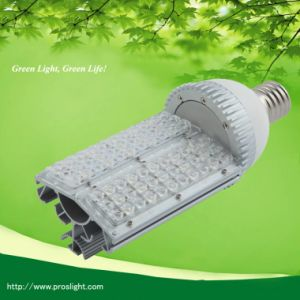 30W High Power LED Street Light and Garden Lamp 2pcbs pictures & photos