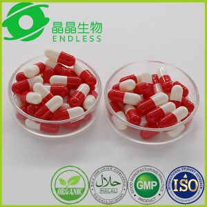Polygonum Cuspidatum Root Extract Resveratrol Powder Capsule pictures & photos