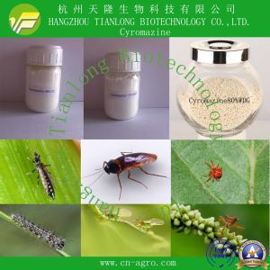 Good Quality Insecticide Cyromazine (98%TC, 20%WP, 50%WP, 75%WP, 50%SP) pictures & photos