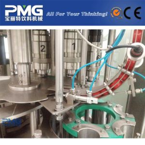 Factory Direct Sale Automatic Small Pet Bottle Mineral Water Bottling Equipment pictures & photos