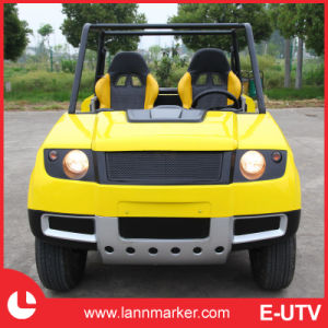 Electric Go Kart pictures & photos