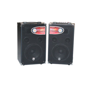 USB/SD Decoding Active Speaker/Active Stage Speaker (A-800)