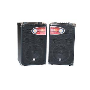 USB/SD Decoding Active Speaker/Active Stage Speaker (A-800)
