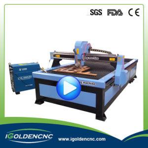 1325 1530 Thc Plasma Metal Cutting Plasma Cutter Cut 40 pictures & photos