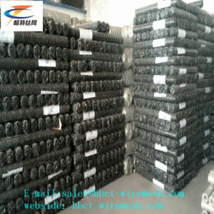 High Quality Electric and Hot Galvanized Gabion Wire Mesh pictures & photos