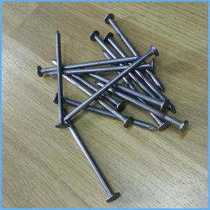 Polished Round Head Common Iron Construction Nail pictures & photos