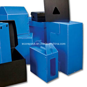 Corrugated Plastic Box pictures & photos