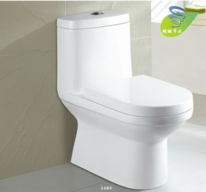 Siphonic One-Piece Water Saving Sanitary Ware CE-T224 pictures & photos