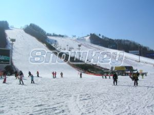 China No. 1 Artificial Snow Systems pictures & photos