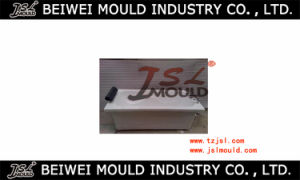 High Quality SMC Bathtub Mould pictures & photos