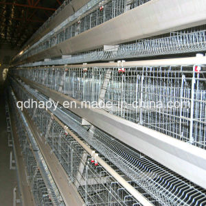 Hot Sale Automatic Chicken Cage Feeding System for Poultry Farming pictures & photos