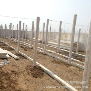 Big Plan Chicken Farm Local Houses in Africa pictures & photos