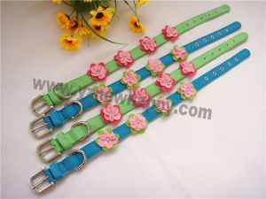 Rib Ribbon Nylon Pet / Dog Collar (C1418)