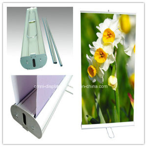 Dispay Stand-Roll up (DW-R-S-7 85CM double sides) pictures & photos