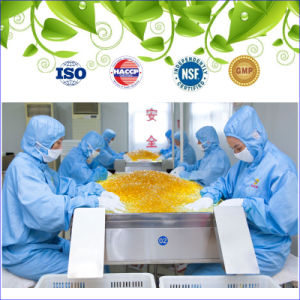 GMP Certified Coenzyme Q10 Softgel pictures & photos