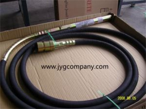 Malaysia Type Concrete Vibrator (JYGZN) pictures & photos
