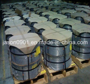 a Quality Stainless Steel Wire pictures & photos