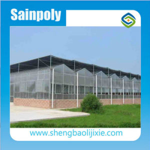 Galvanized Steel Frame Venlo PC Greenhouse Kits Plastic Film Greenhouse for Vegetables pictures & photos