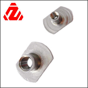 Stainless Steel T Nut pictures & photos