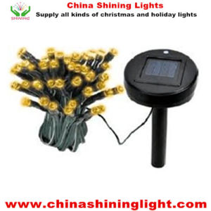 UL USA America Standard LED Bulb Solar Power String Lights pictures & photos