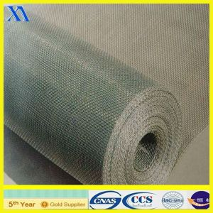 100 Mesh and 1*30m Stainless Mesh (XA-SS002) pictures & photos