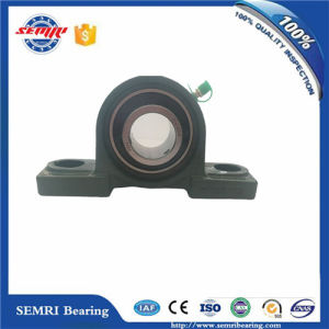High Speed Tfn Brand Pillow Block Bearing (UCP207)