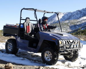 800cc UTV 4X4 Utility Vehicle pictures & photos