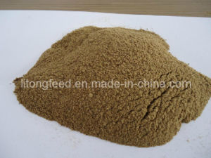 Fish Meal 72% Protein for Animal Feed