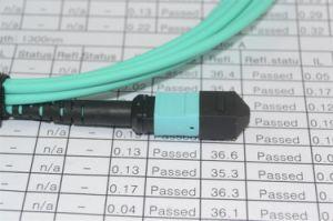 12cores MTP Connector Fiber Optic Patch Cord pictures & photos