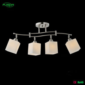 Popular Iron Chandelier Lighting, Ceiling Lamp in Guzhen pictures & photos