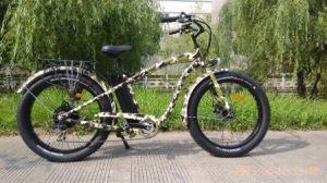 2017 City Cruiser 48V13ah Beach Cruiser Electric Bike pictures & photos