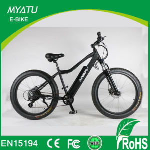 1000W 48V Snow Electric Bicycle/Fat Tire Cheap Moumtain Electric Bicycle pictures & photos