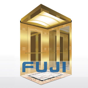 FUJI Lucury Passenger Elevator Lift with Glass Mirror Price pictures & photos