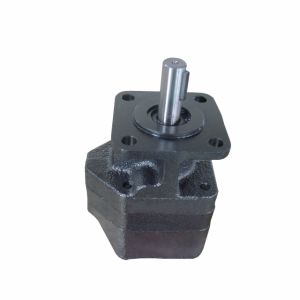 Hydraulic Gear Pump Motor with Relief Valve and Outboard Bearing pictures & photos