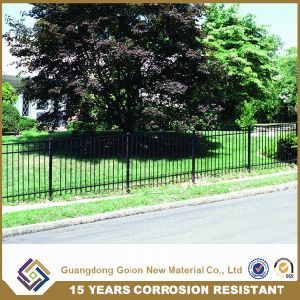 Black Wrought Iron Metal Fence pictures & photos