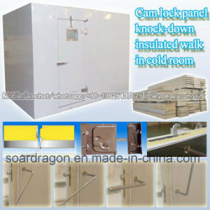Cam Lock Panel Knock-Down Insulated Walk in Cold Room pictures & photos