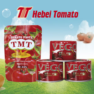 Tomato Paste Tomato Ketchup Tomato Sauce pictures & photos