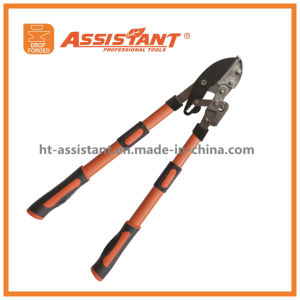 Ratchet Lopping Shears PTFE Coated Compound Telescopic Bypass Branch Loppers pictures & photos